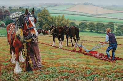 Horses ploughing