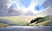 David Bellamy`s painting